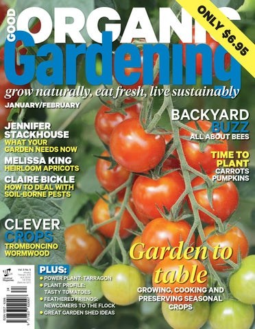 5+ Rare Seeds a $29.95 Value FREE Bonus 6 Variety Seed Pack Lush Queen Tomato Seeds Packed in FROZEN SEED CAPSULES for Growing Seeds Now or Saving Seeds For Years