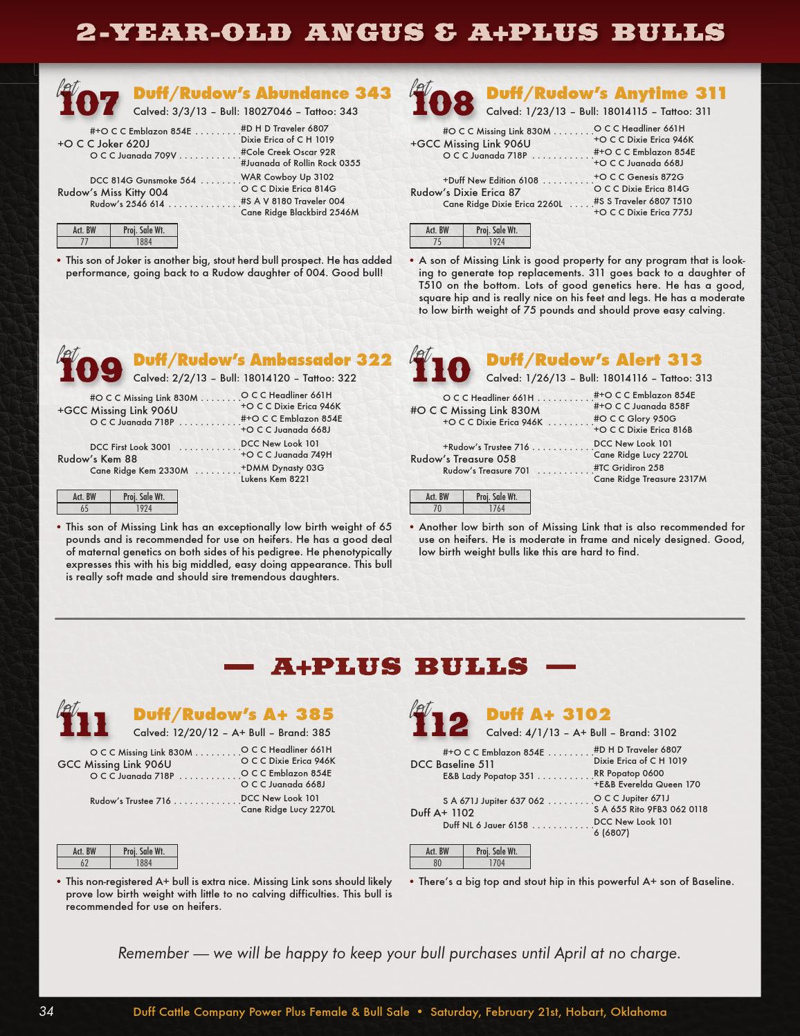 7847d3bd14 Duff 2 21 15 web by Christy Collins Inc - issuu