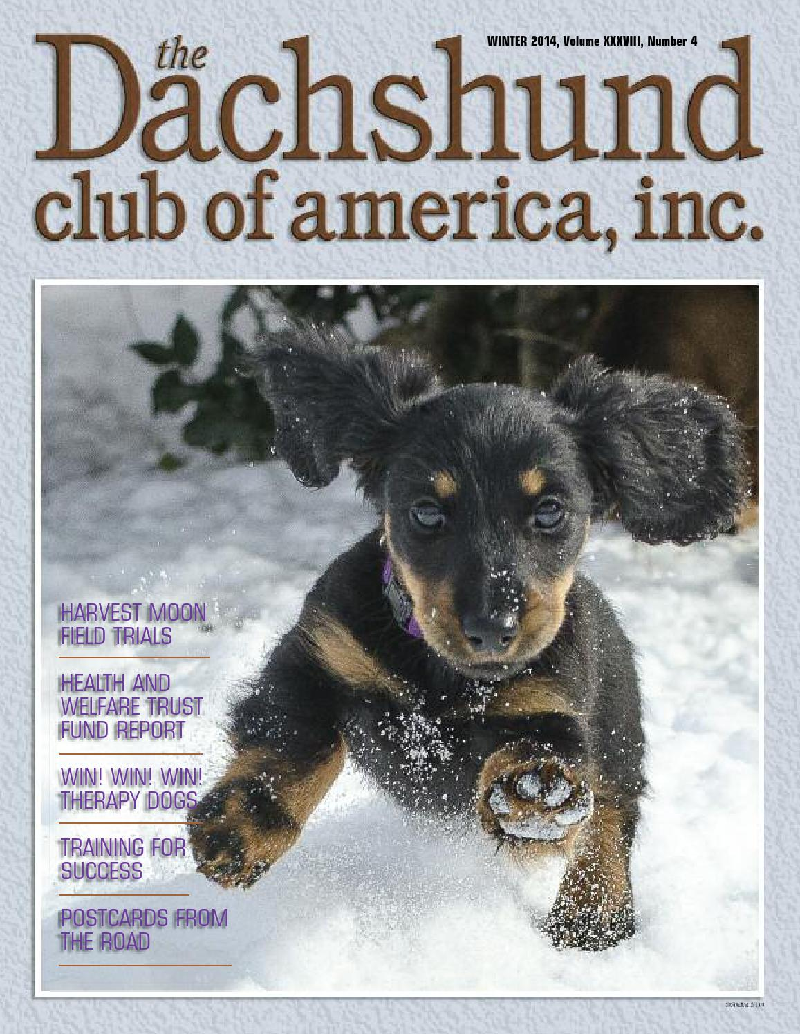 Autumn 2012 DCA Newsletter by Lynne Dahlen - issuu