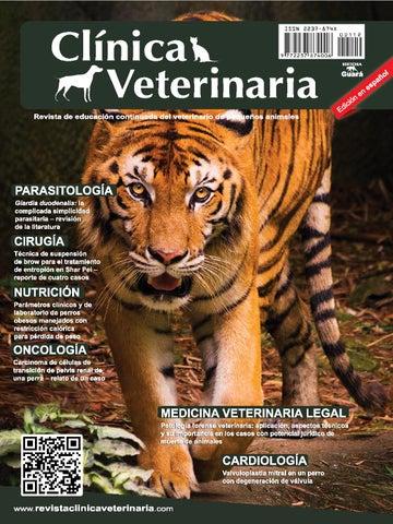 Clínica Veterinaria n. 112 - edición en español by Revista Clínica ...