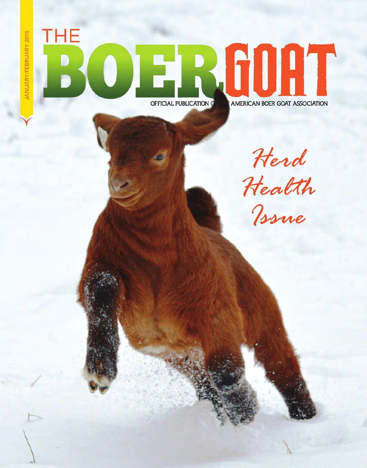 The Boer Goat January/February 2015 by American Boer Goat ... - photo#29