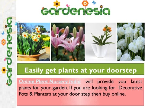 Garden Plants And Products Easily