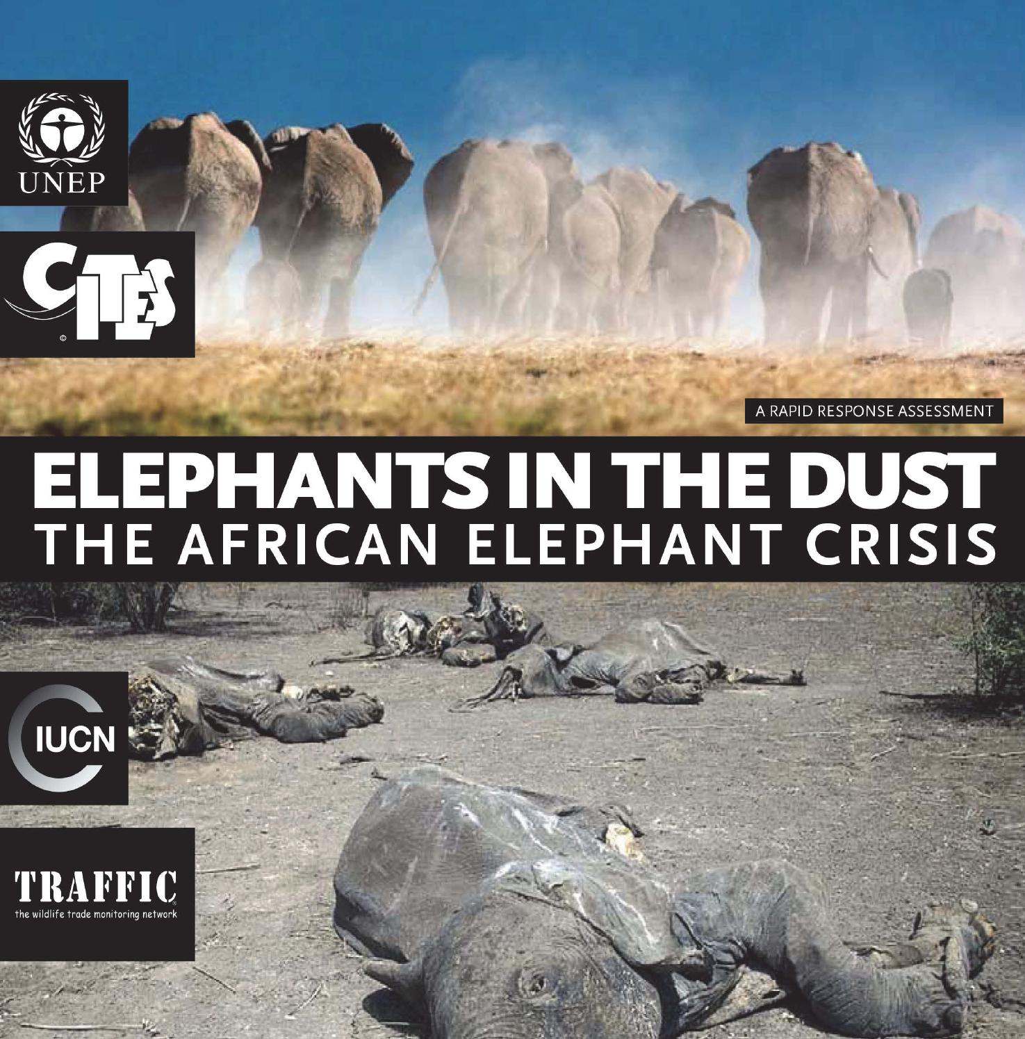 Elephants in the Dust: The African Elephant Crisis by United Nations  Publications - issuu