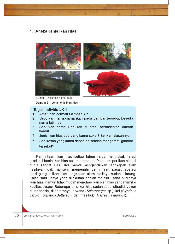Download 7600 Gambar Ikan Hias Dan Nama Latinnya HD Terbaru