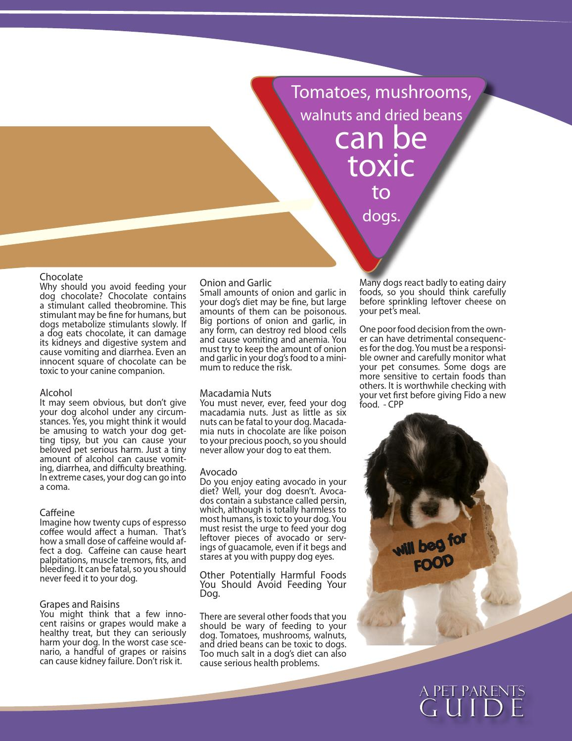 A Pet Parent S Guide By The Victoria Napolitano Group Llc Issuu