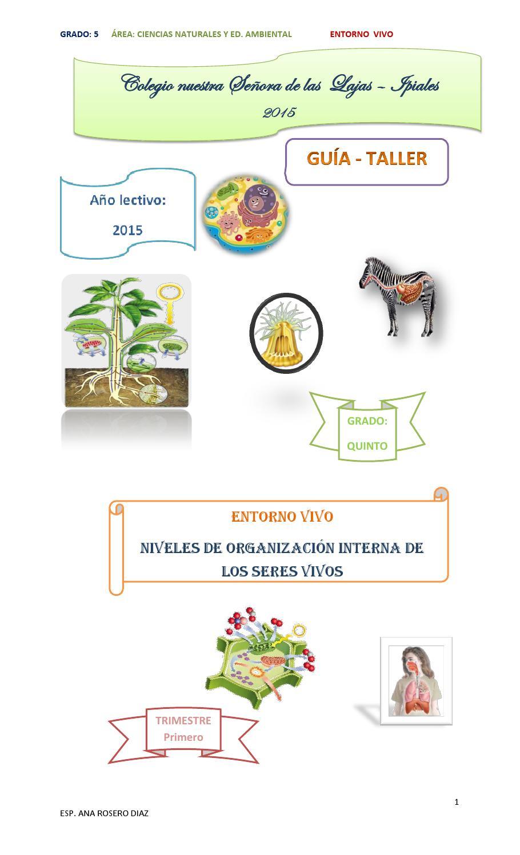 Issuu 2015 naturales g 5 by ana rosero diaz issuu - Estructuras libros vivos ...