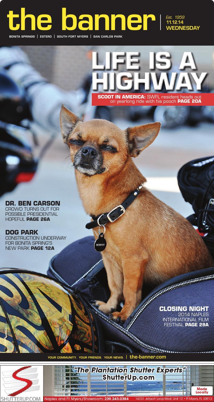 Paws With Attitude Chihuahua Dog Print Capris Leggings White