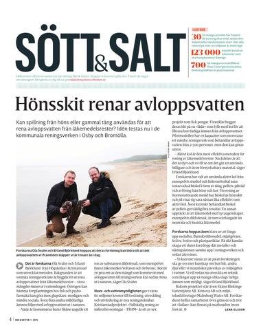Piltrad renar svenskt avloppsvatten