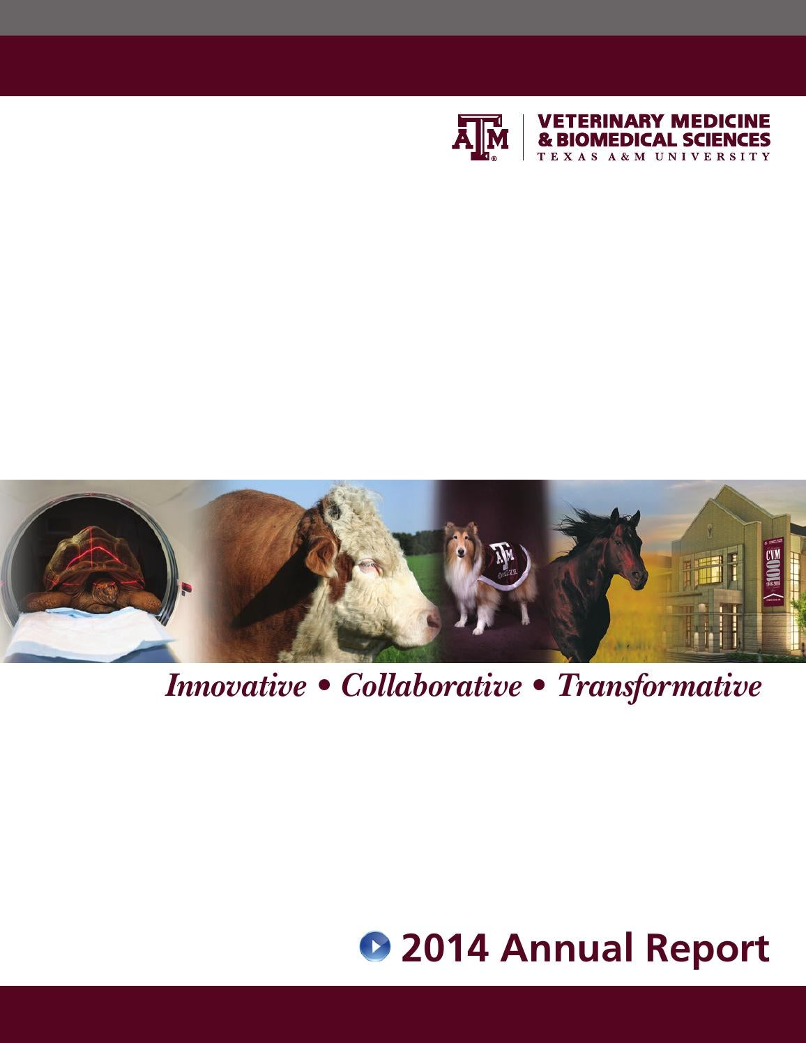 CVM 2014 Annual Report by Texas A&M College of Veterinary