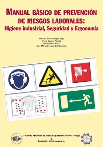 Manual de seguridad industrial 1 by nestor martin pech for Plan de prevencion de riesgos laborales oficina