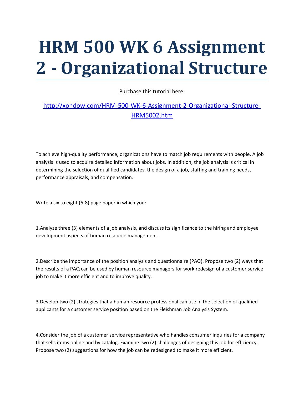 organizational structure analysis paper