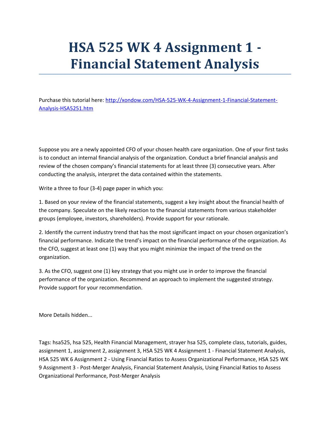 Essay on financial statements