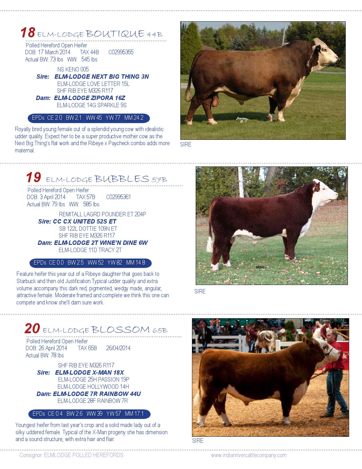 2015 Source For Success Bull Sale by Juanita Elmhirst - issuu