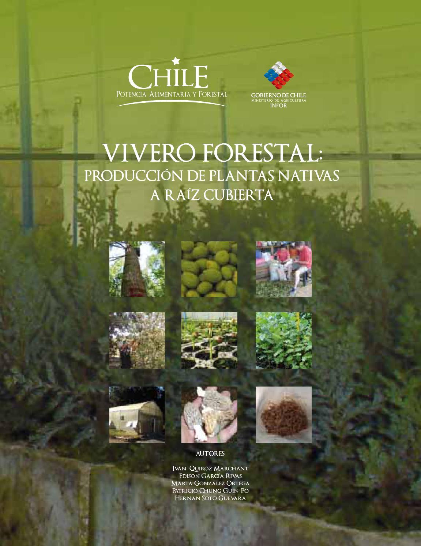 Vivero forestal produccion de plantas nativas a raiz for Materiales para un vivero forestal