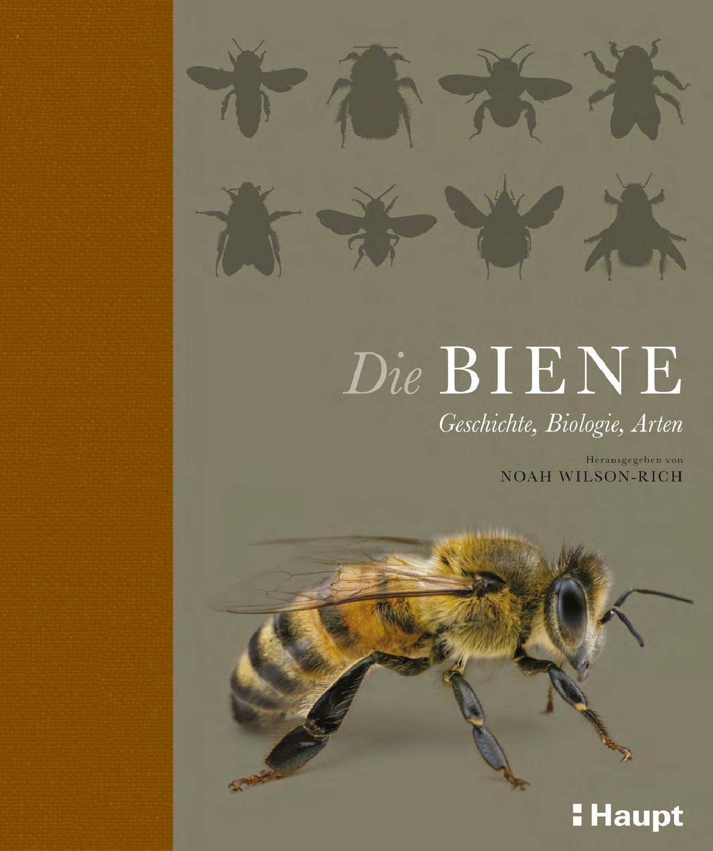 Wilson-Rich, Die Biene by Haupt Verlag - issuu