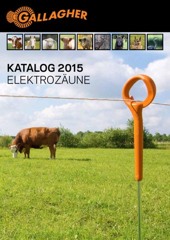 Gallagher 2015 by ZT Medien AG - issuu