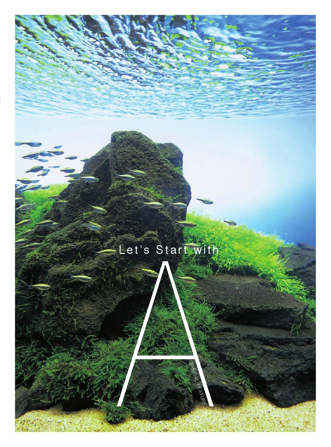 Ada Lets Start With A By Peha68 Issuu Thermometer Original For Aquascape Aquarium