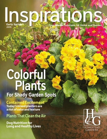 Homestead Gardens Inspirations by Brian Riddle - issuu