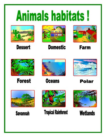 Animal Habitats For Kids By Adevpro Issuu