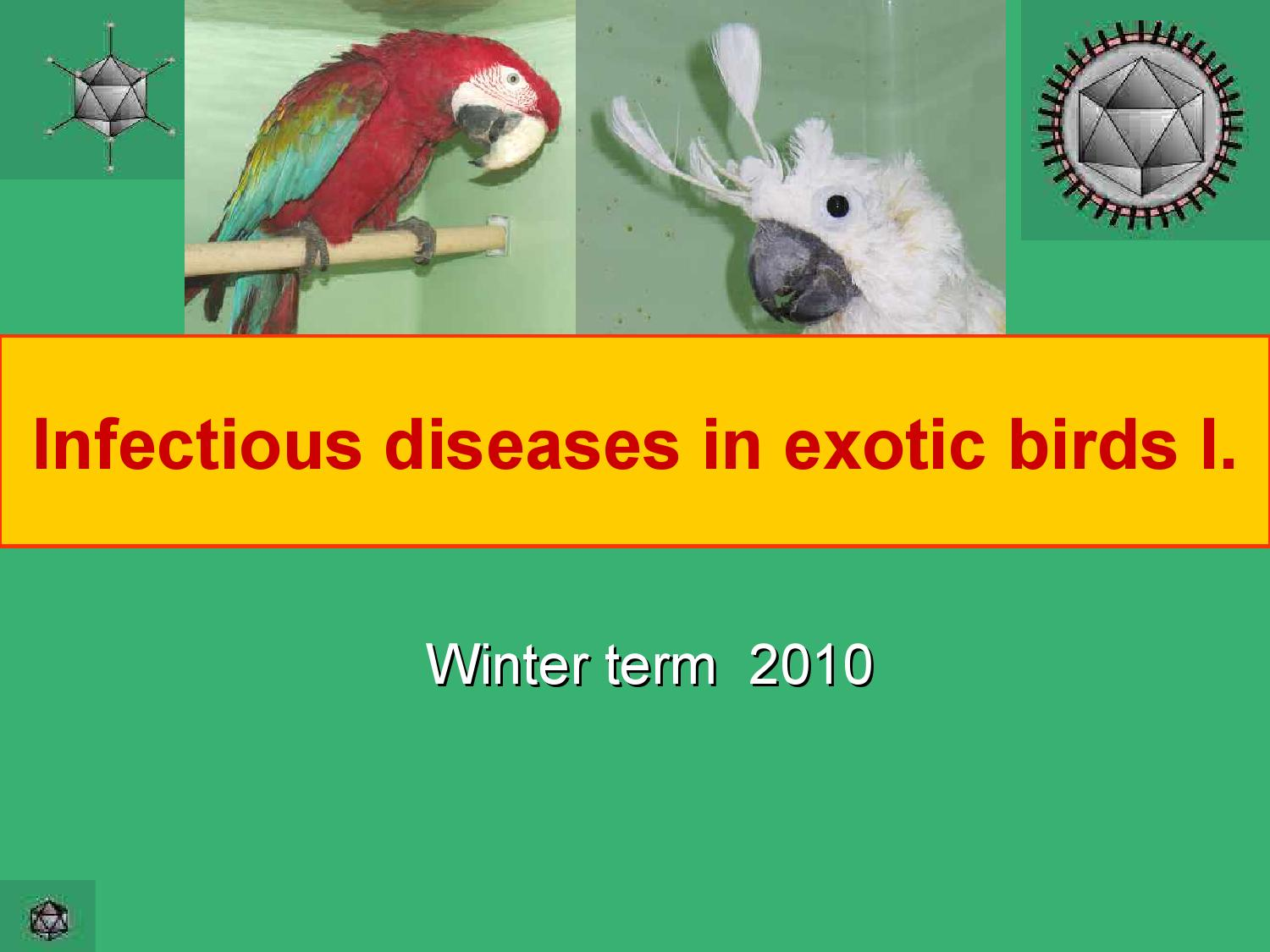 Infectious diseases in exotic birds i by Abohemeed Aly - issuu