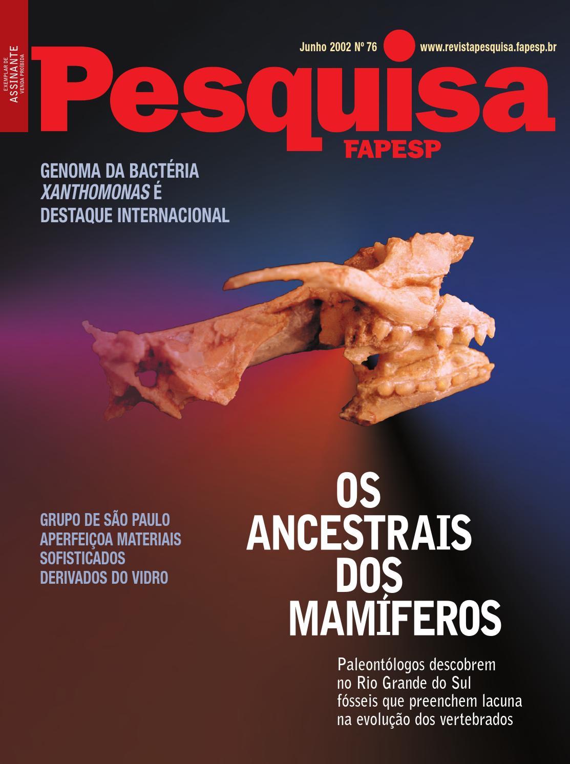 Os ancestrais dos mamíferos by Pesquisa Fapesp - issuu 38f0179e52