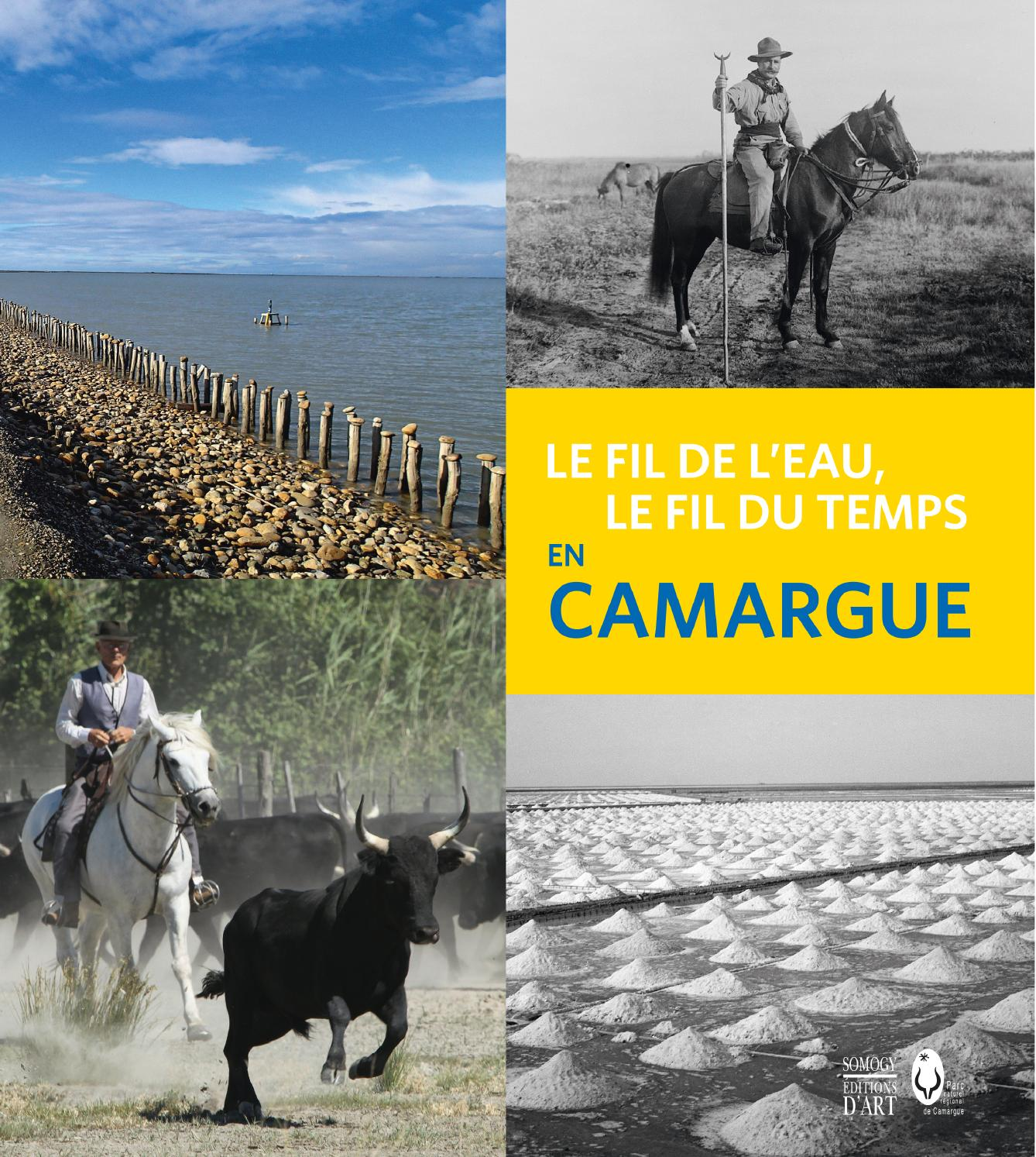 d589bb27a755 En Camargue. Le fil de l eau, le fil du temps (extrait) by Somogy éditions  d Art - issuu