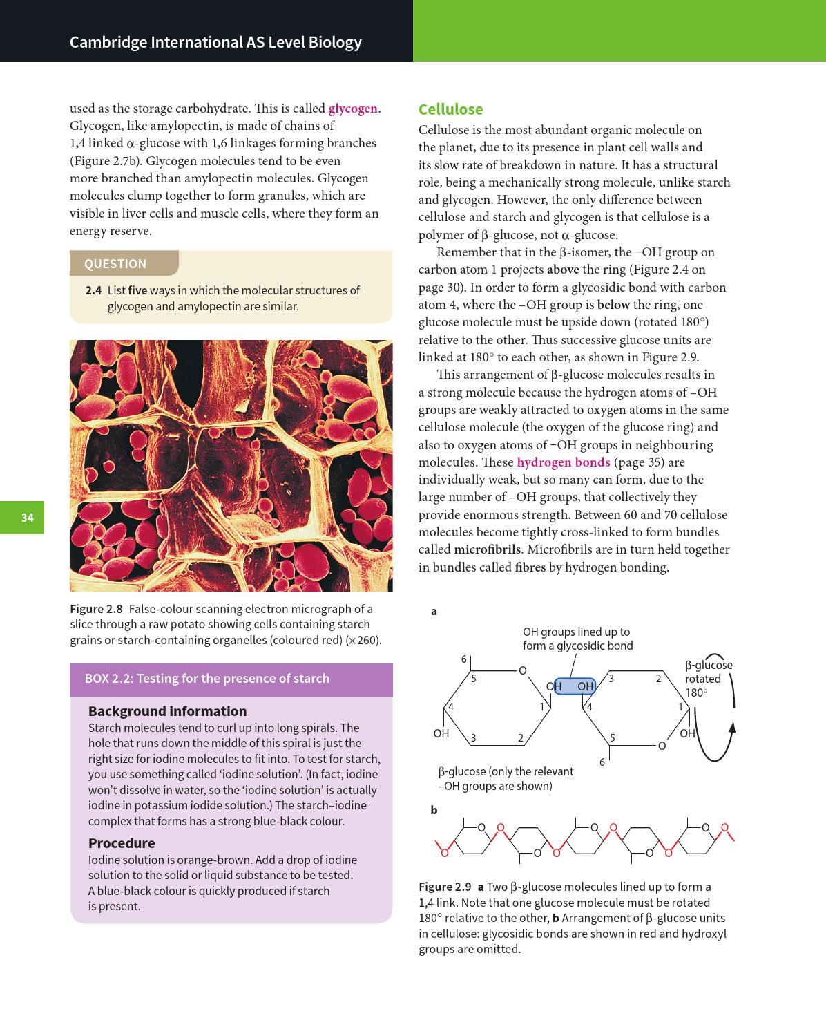 Cambridge International As And A Level Biology Coursebook With Cd Rom By Cambridge University Press Education Issuu