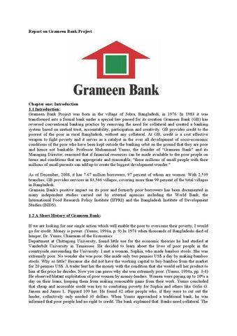 grameen bank internship experience report