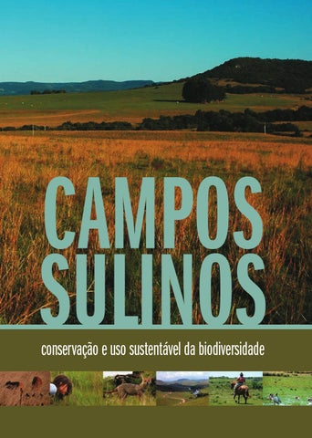 Campossulinos by murilo issuu page 1 fandeluxe Choice Image