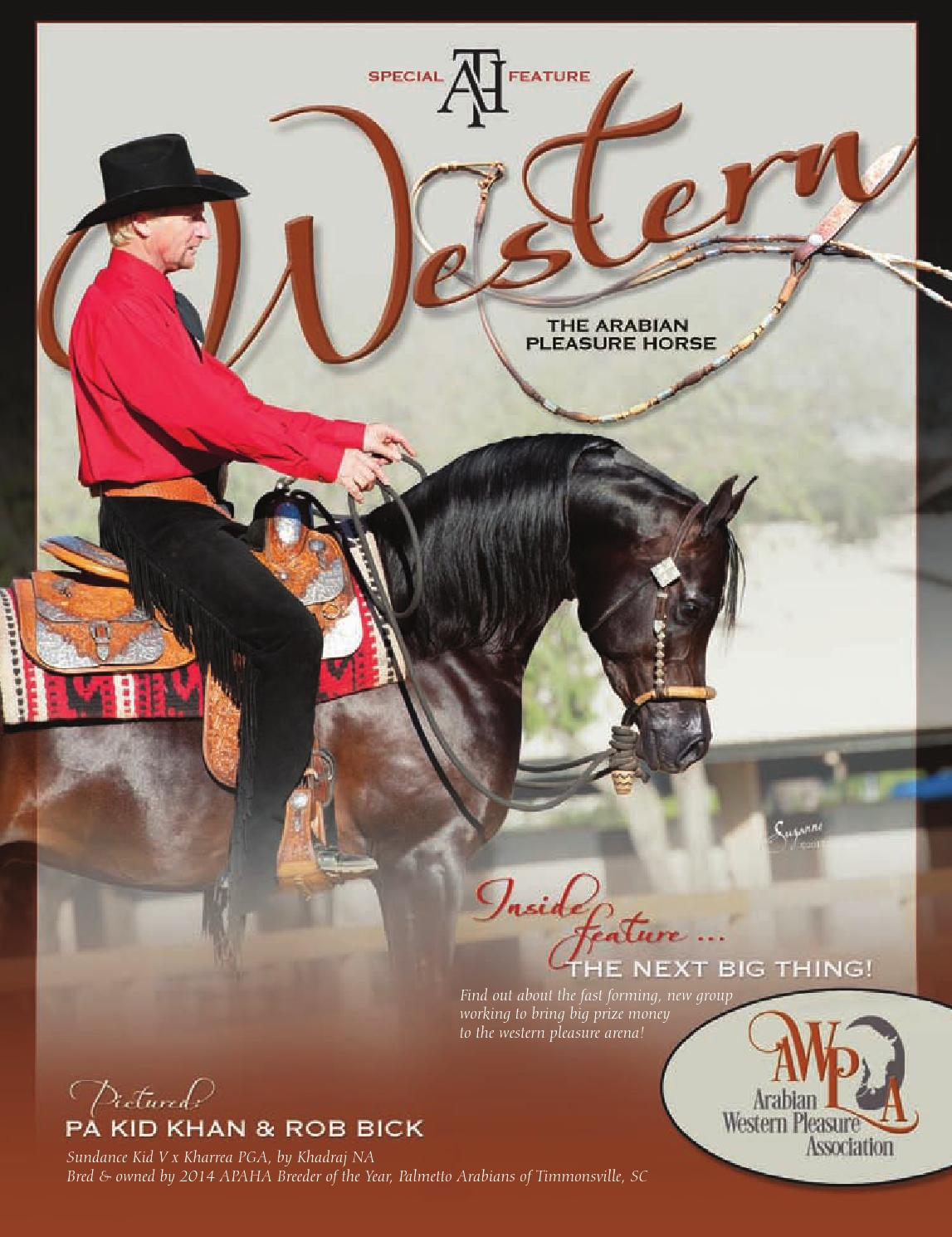 Western The Arabian Pleasure Horse By Arabian Horse Times Issuu