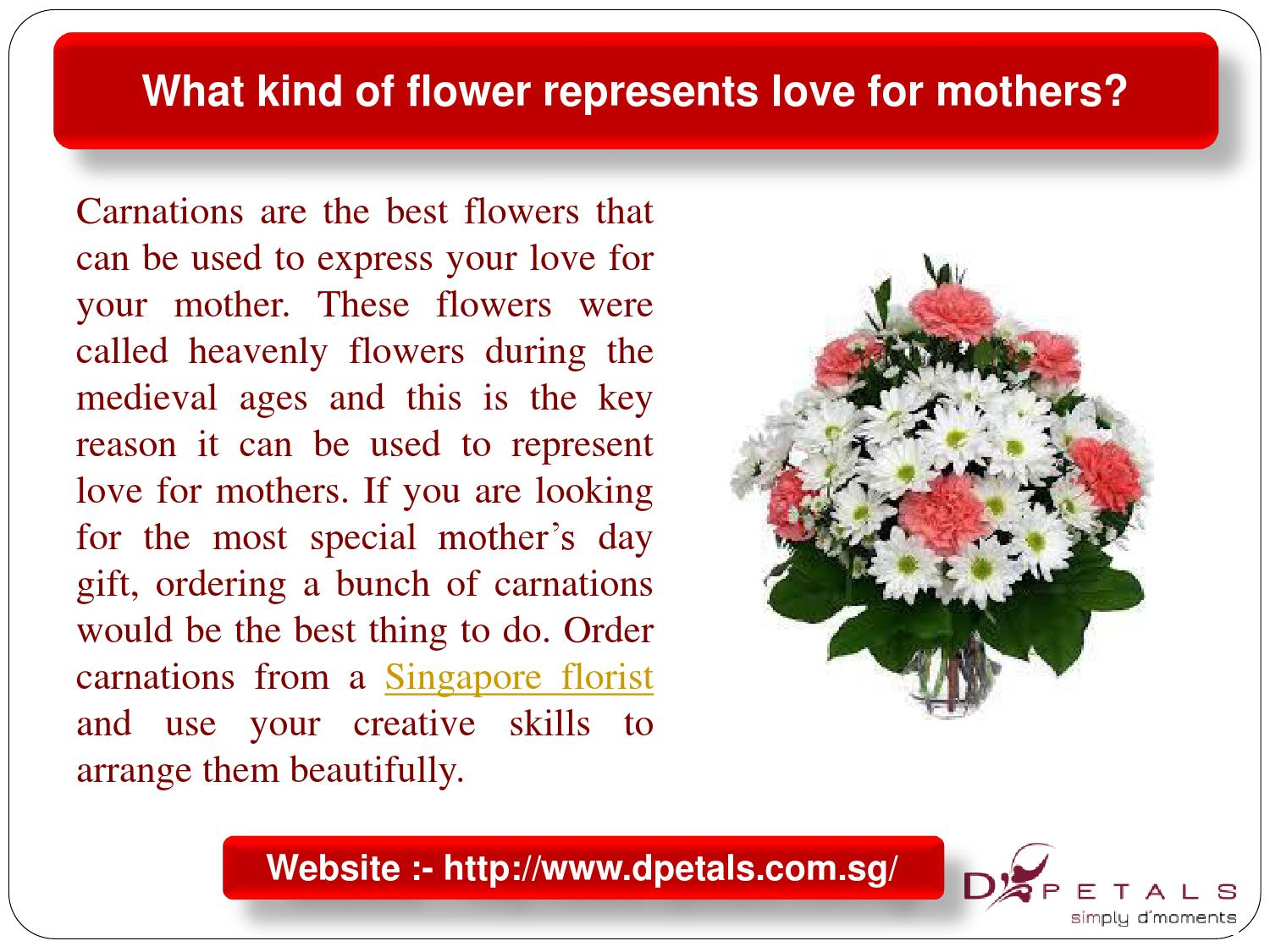 What kind of flower represents love for mothers by addy for Flowers that represent love