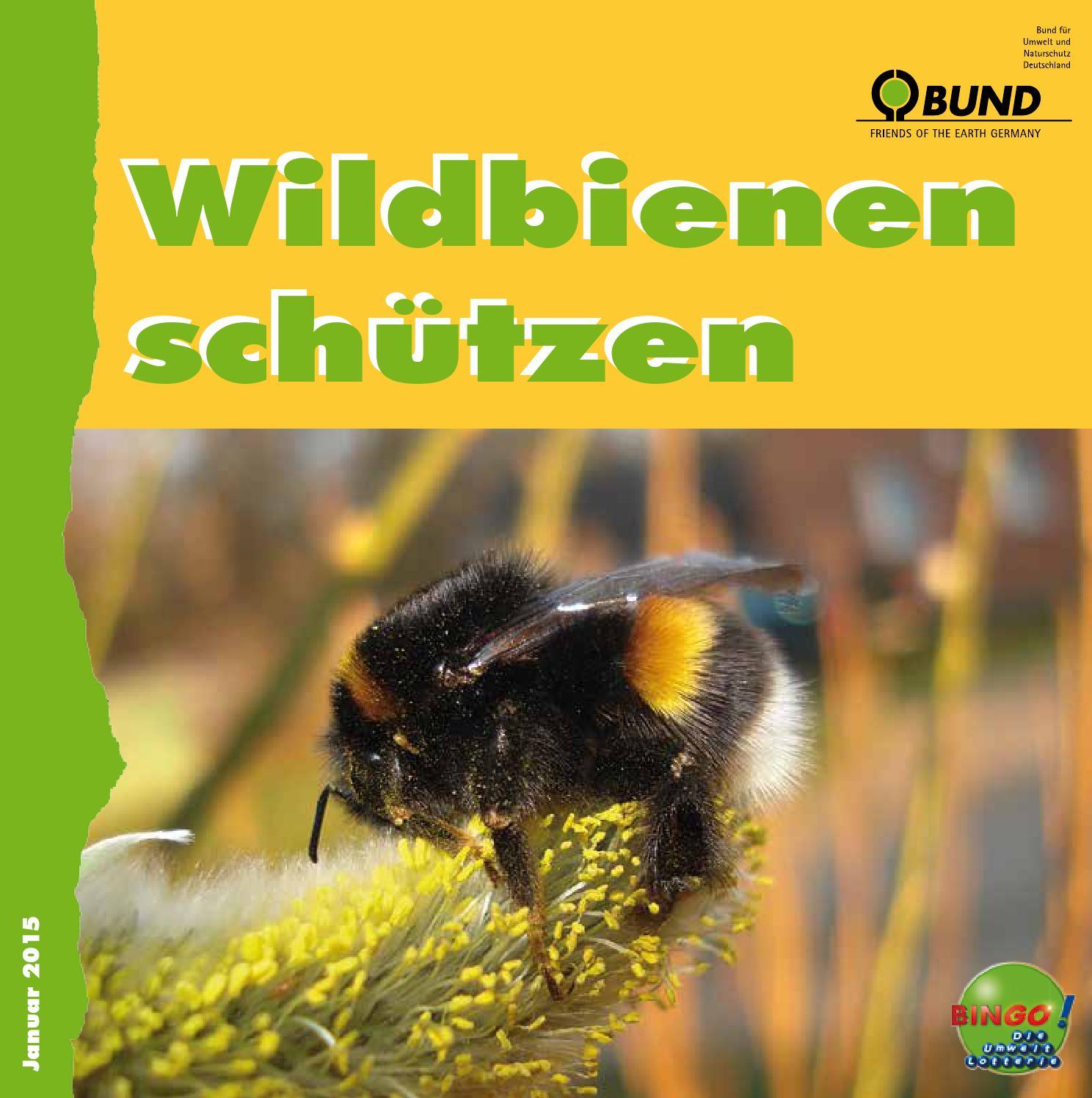 Wildbienen schützen by Bund für Umwelt und Naturschutz Deutschland e ...