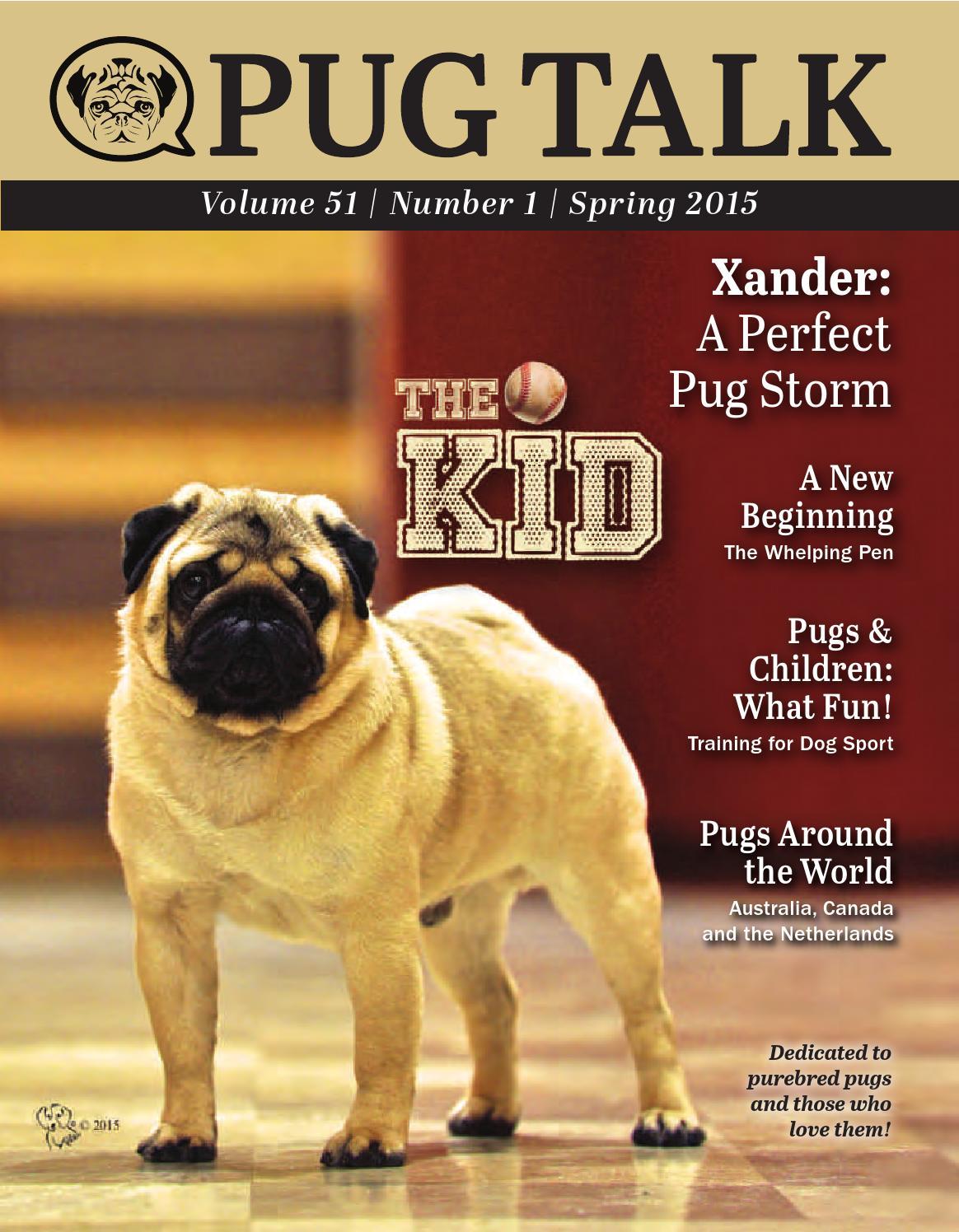 Pug Talk Spring 2015 By Pug Talk Issuu