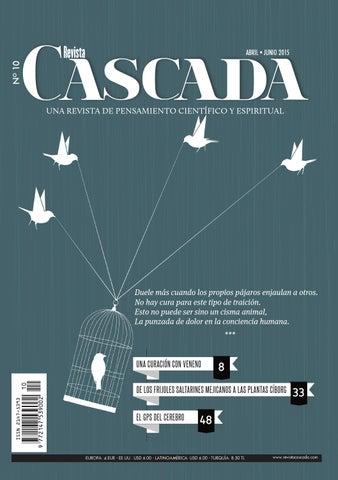 Revista Cascada Nº 10 by cascada - issuu