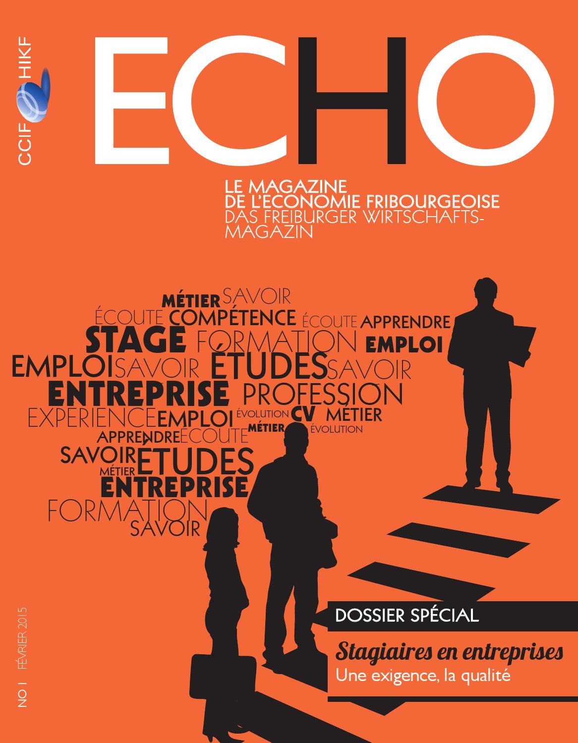 echo f u00e9vrier 2015 by chambre de commerce et d u0026 39 industrie du
