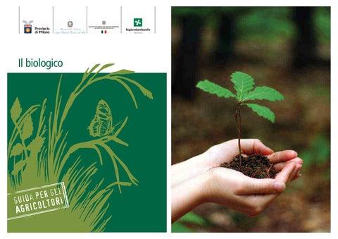 agricoltori biologici datati tecniche di datazione relative e assolute