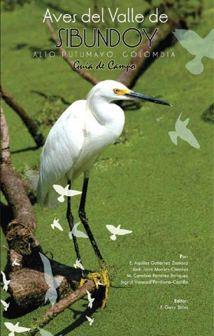 Aves de sibundoy 2014full by bibi Gomez - issuu 922e8721dd0