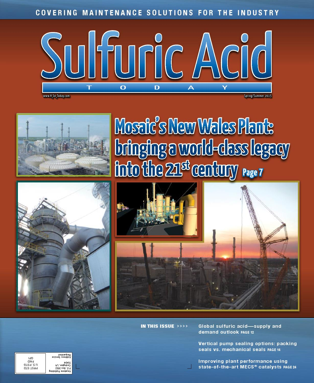 Spring Summer 2015 By Sulfuric Acid Today Issuu