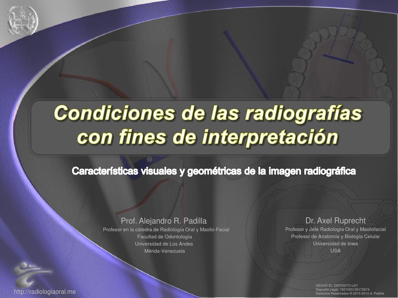 Características visuales y geométricas de la imagen radiográfica by ...
