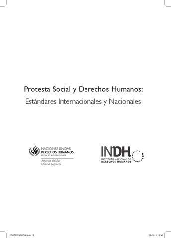 Protesta Social Y Derechos Humanos By Provea Ong Issuu