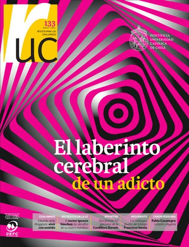 Ru n133 by publicaciones uc issuu page 1 urtaz Gallery