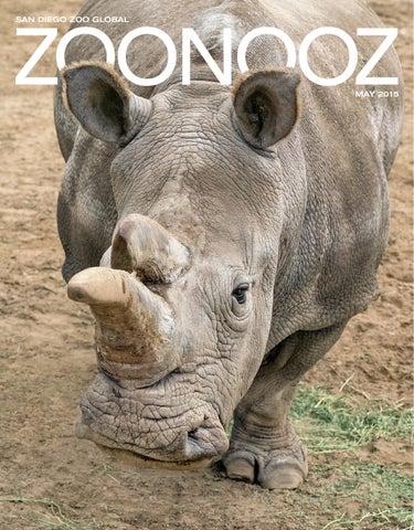 fa4f22050 ZOONOOZ May 2015 by San Diego Zoo Global - issuu