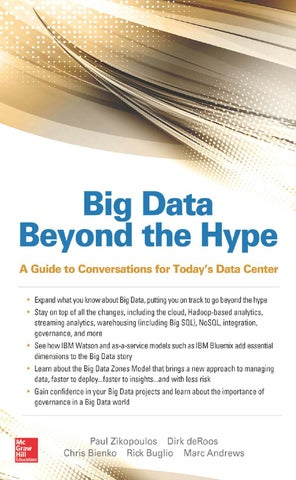 Big Data Beyond the Hype by Paradigm Technology - issuu