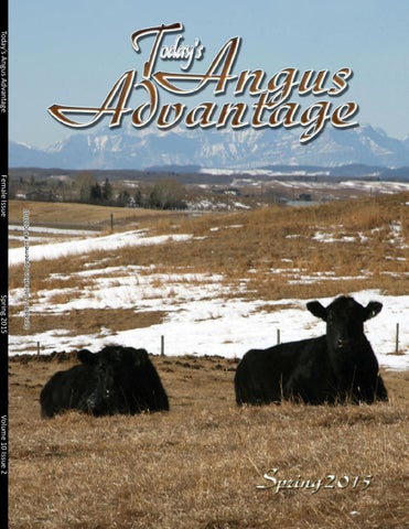 3c584bb32392f Today's Angus Advantage - Spring Issue 2015 by Today's Publishing ...