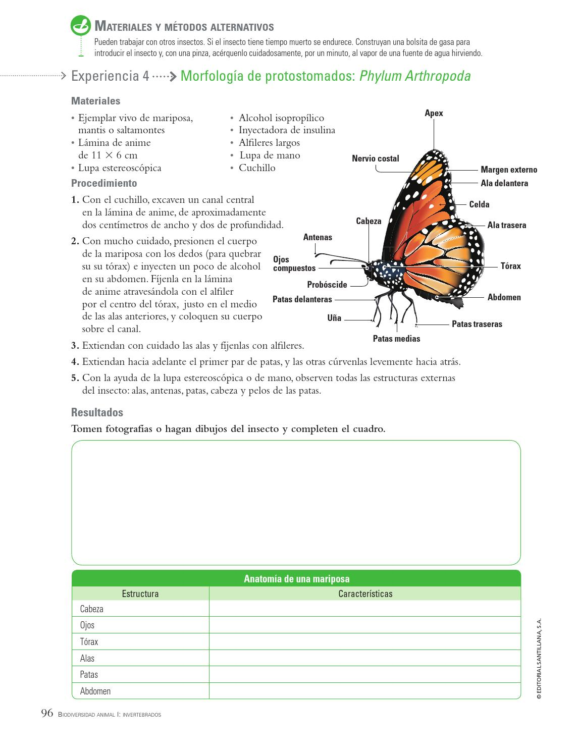 Prácticas de Laboratorio Biología 4to año by SANTILLANA Venezuela ...