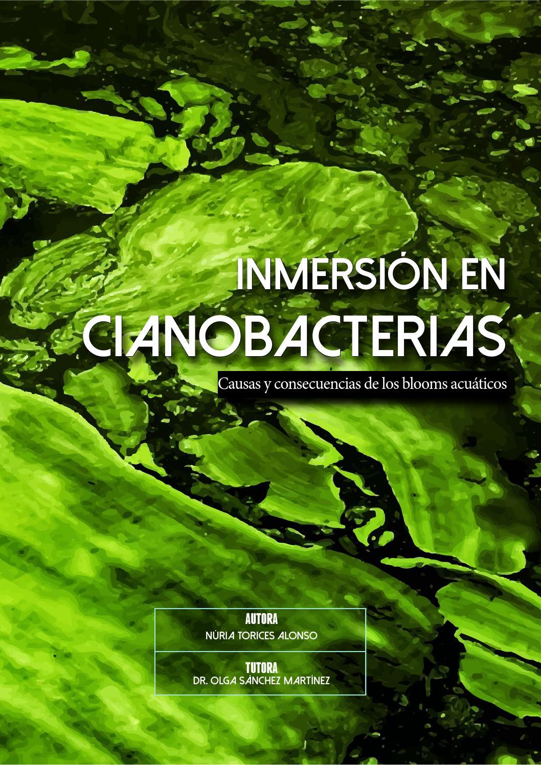 Tipos De Cianobacterias
