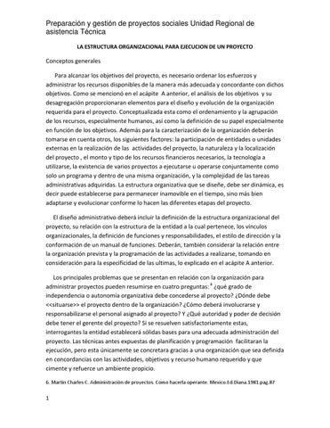 La Estructura Organizacional Para Ejecucion De Un Proyecto