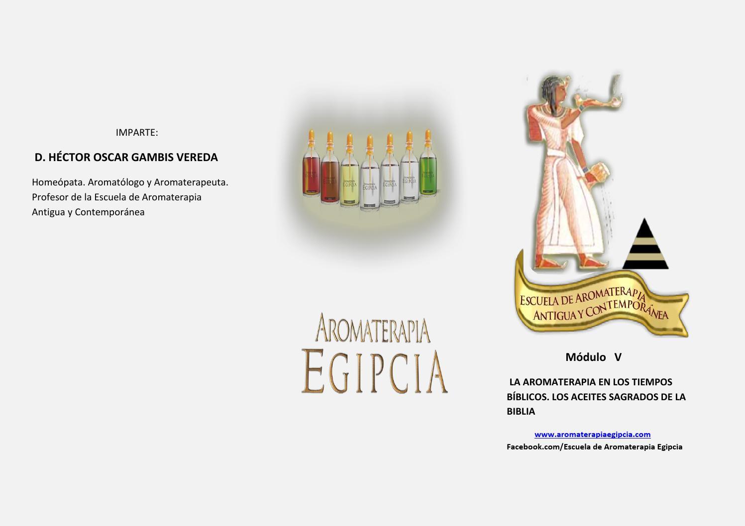 triptico manual v aceites biblicos by aromaterapia egipcia