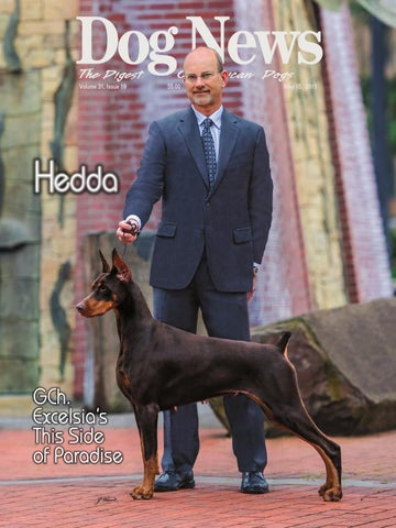Dog News The Digest Volume 31 Issue 19
