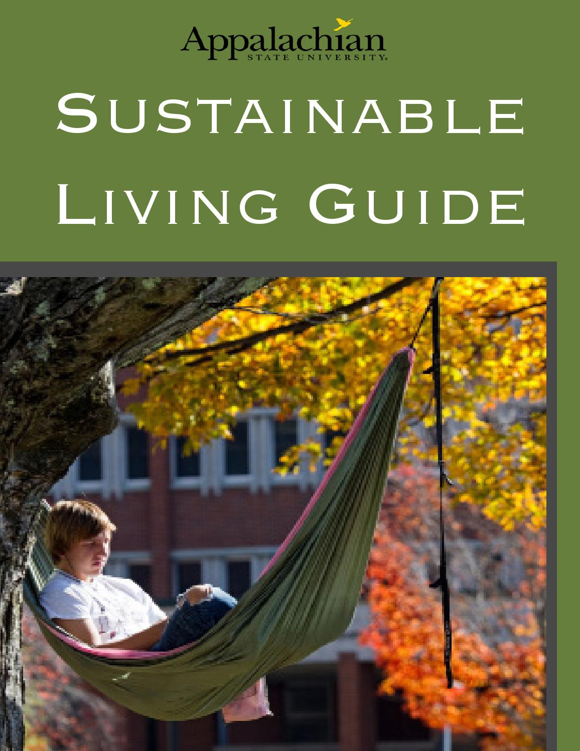 sustainable living essay Sustainability is a broad discipline, giving students and graduates insights into most aspects of the human world from business to technology to environment and the social sciences.